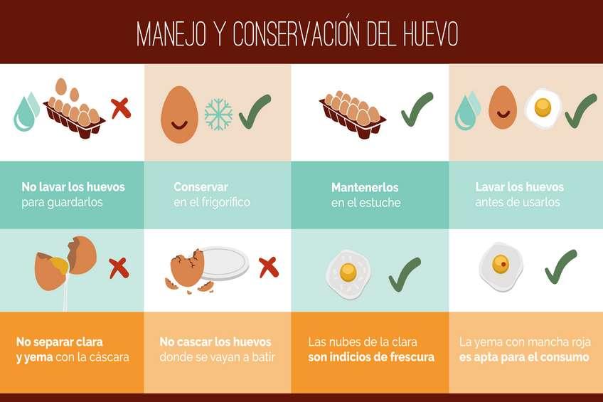 Manejo_Conservación_Huevo.jpg