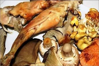 Conejo asado con hongos