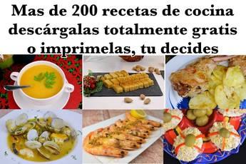 Recetas de cocina en PDF descarga gratis más de 200 recetas